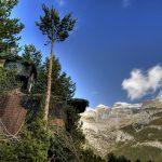 spain-pyrenees-hacking bearded vulture